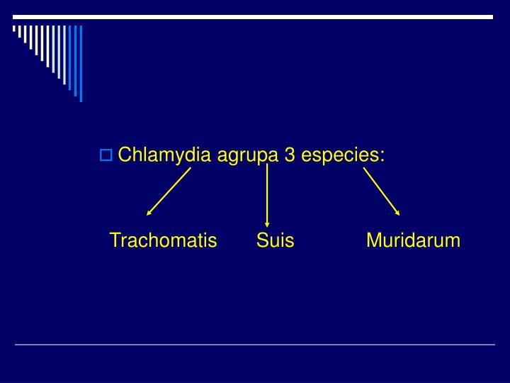 Chlamydia agrupa 3 especies: