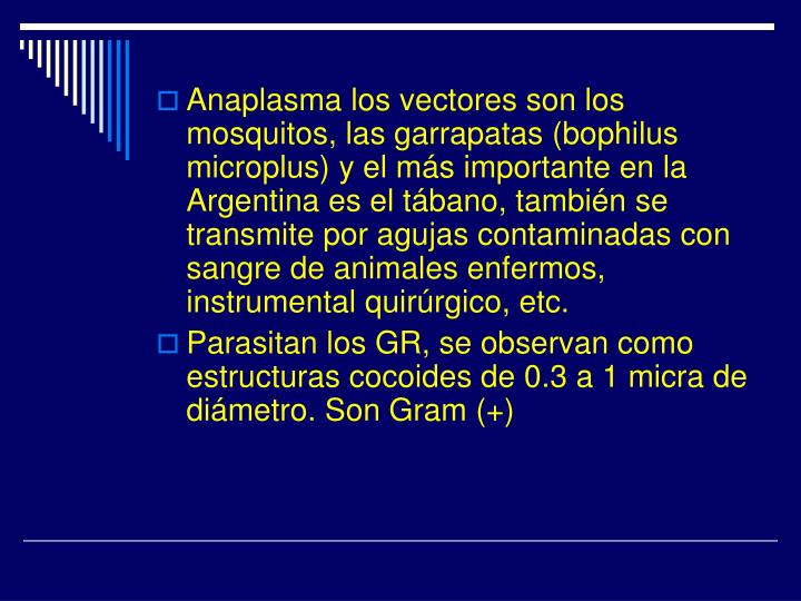 Anaplasma