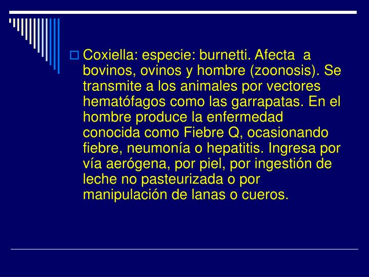 Coxiella: especie: burnetti. Afecta  a bovinos, ovinos y hombre (zoonosis). Se transmite a los animales por vectores hematófagos como las garrapatas. En el hombre produce la enfermedad conocida como Fiebre Q, ocasionando fiebre, neumonía o hepatitis. Ingresa por vía aerógena, por piel, por ingestión de leche no pasteurizada o por manipulación de lanas o cueros.