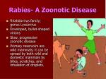 rabies a zoonotic disease