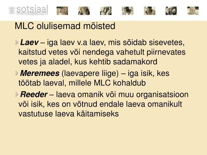 MLC olulisemad mõisted