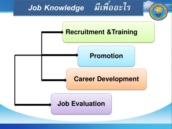 Job Knowledge    มีเพื่ออะไร