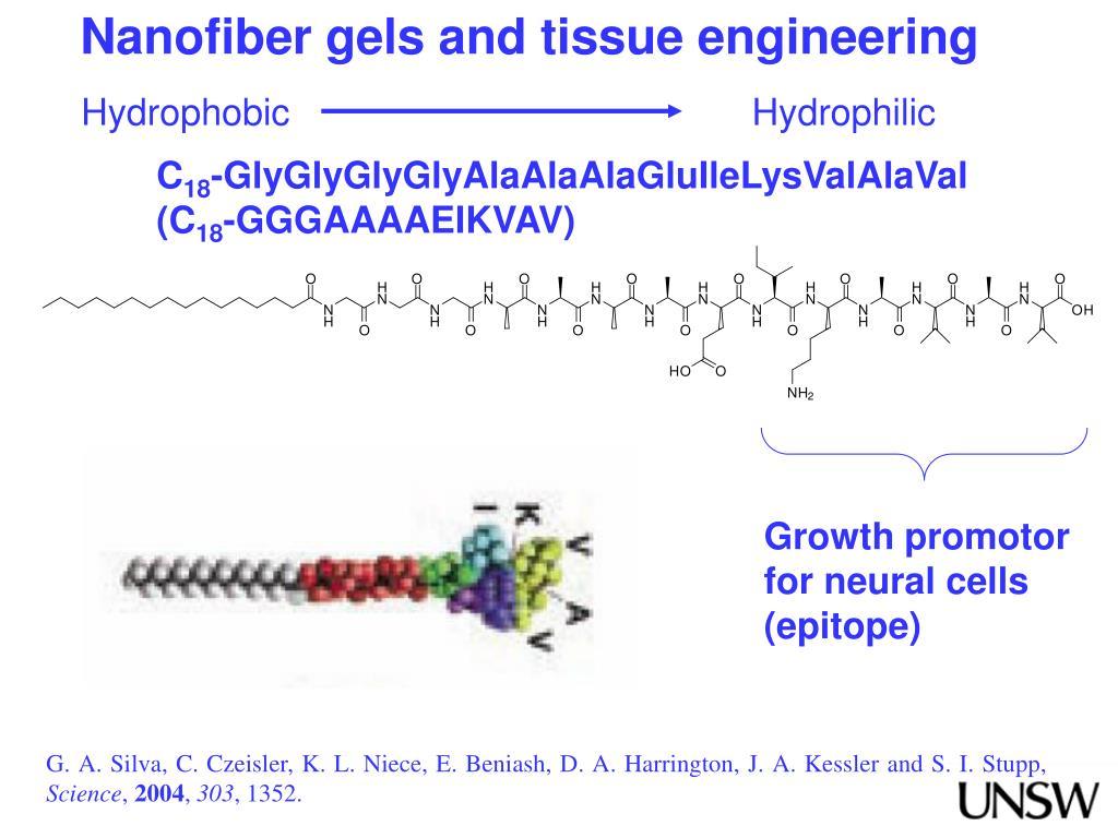 Nanofiber gels and tissue engineering
