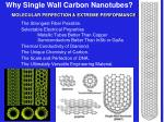 why single wall carbon nanotubes