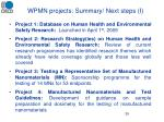 wpmn projects summary next steps i