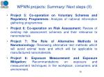 wpmn projects summary next steps ii