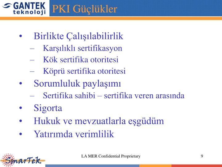 PKI Güçlükler