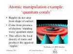 atomic manipulation example quantum corals59