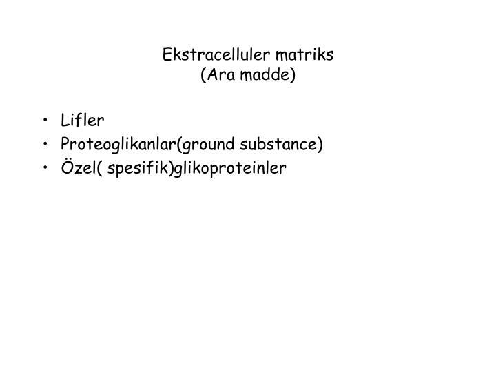 Ekstracelluler matriks