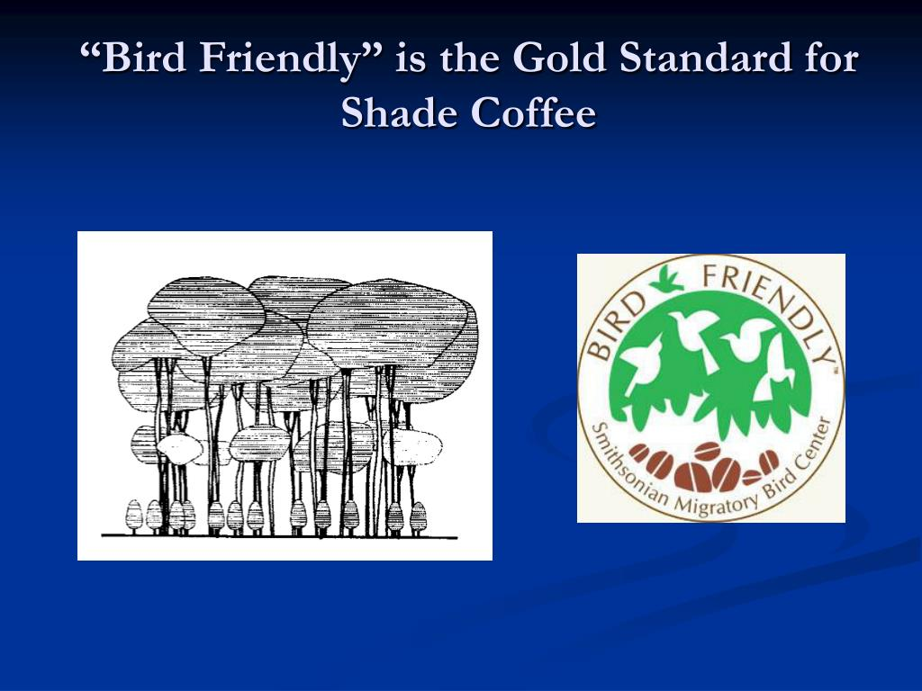 """""""Bird Friendly"""" is the Gold Standard for Shade Coffee"""