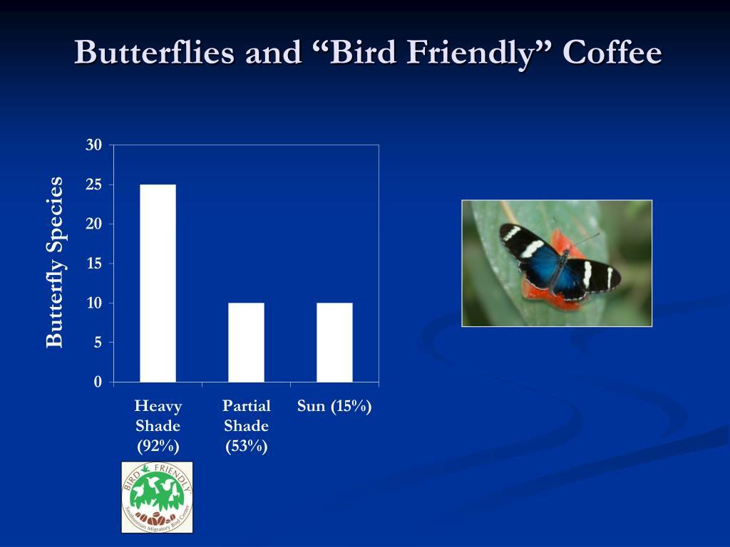 """Butterflies and """"Bird Friendly"""" Coffee"""