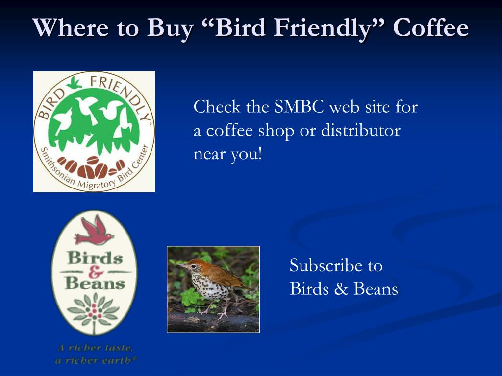 "Where to Buy ""Bird Friendly"" Coffee"