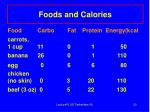 foods and calories