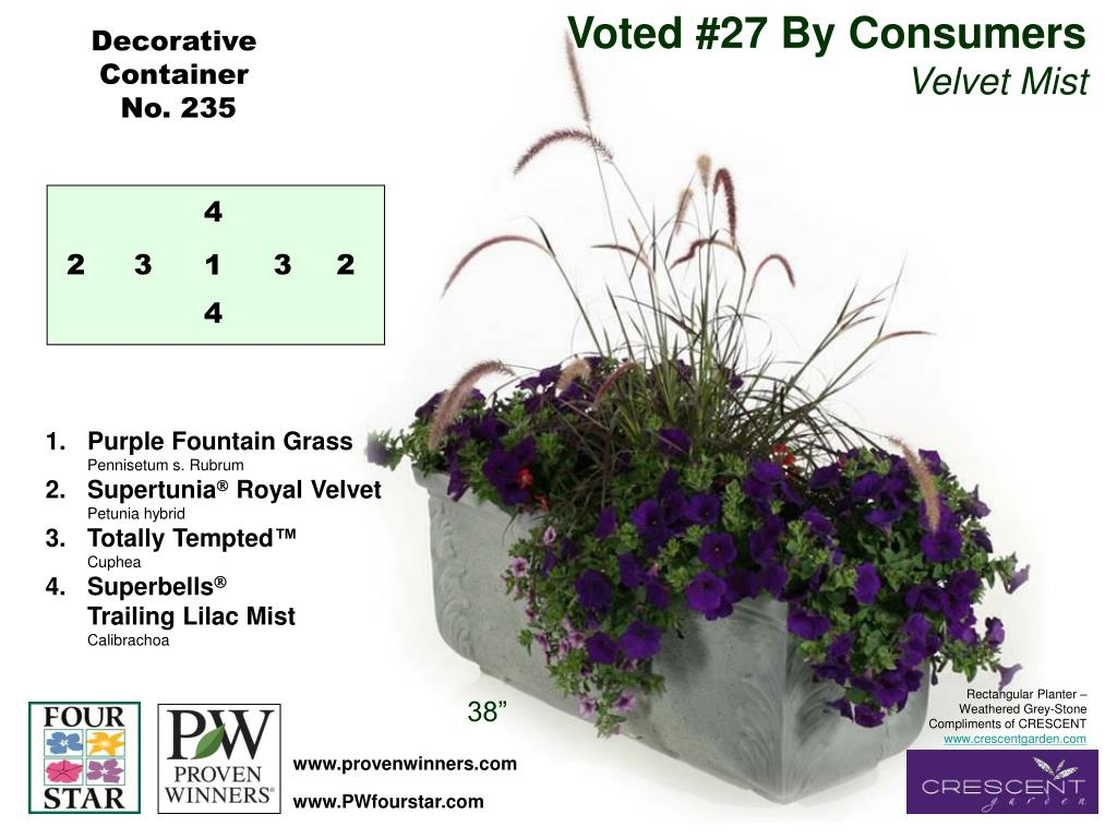 Voted #27 By Consumers