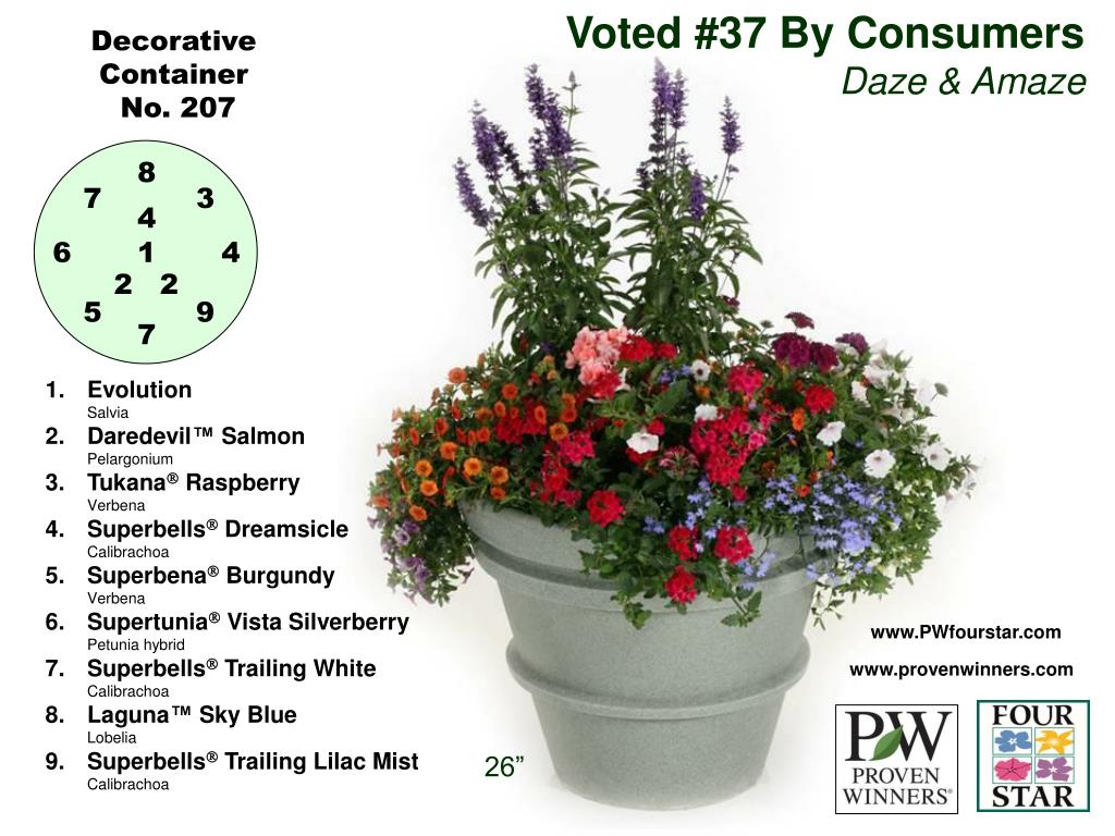 Voted #37 By Consumers