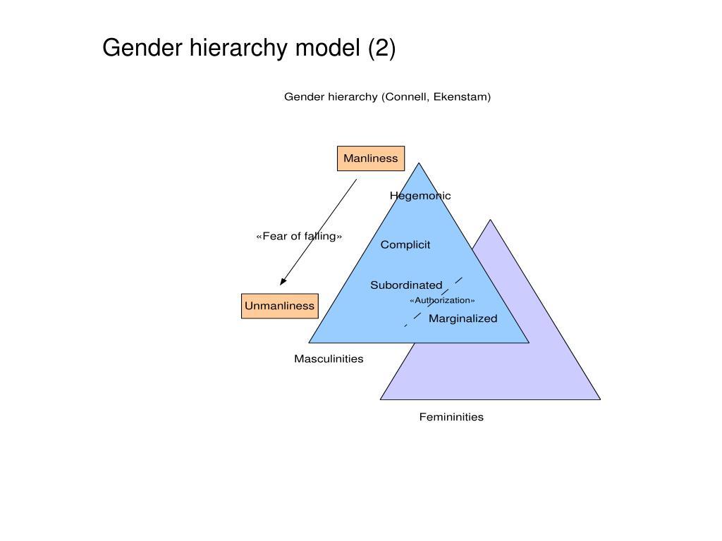 Gender hierarchy model (2)