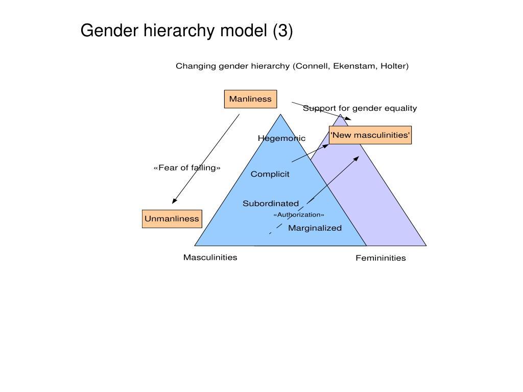 Gender hierarchy model (3)