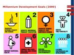 millennium development goals 2000
