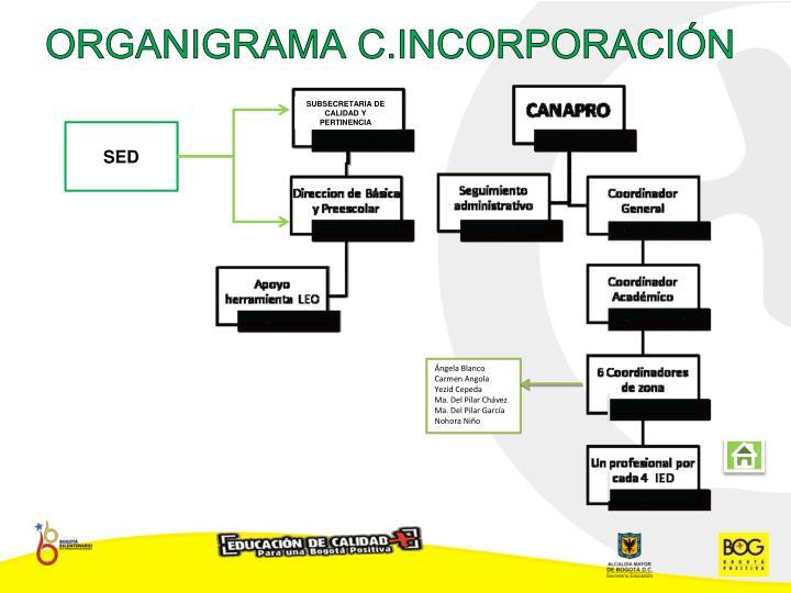 ORGANIGRAMA C.INCORPORACIÓN