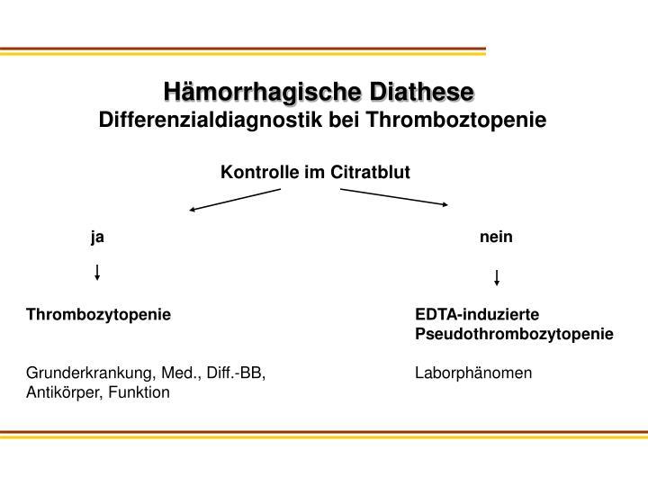 Hämorrhagische Diathese