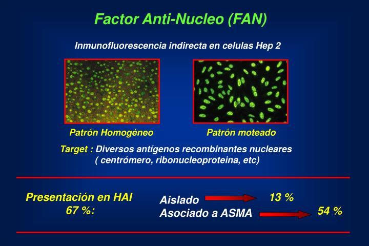 Factor Anti-Nucleo (FAN)