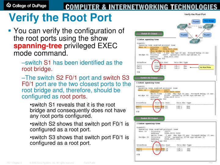 Verify the Root Port