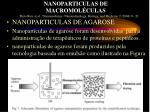 nanoparticulas de macromol culas2