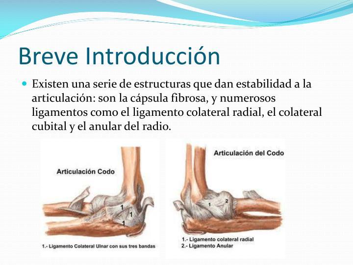PPT - Lesiones más frecuentes provocadas por movimientos de codo a ...