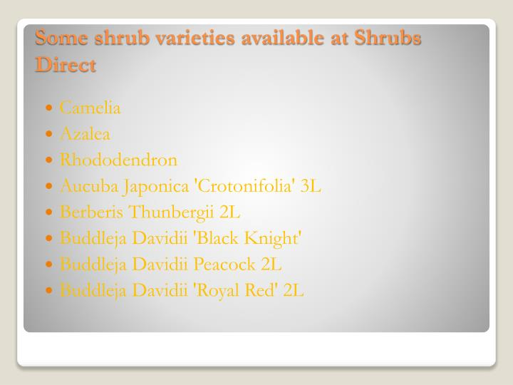 Some shrub varieties available at shrubs direct