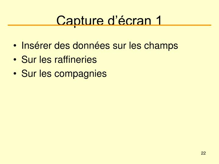Capture d'écran 1