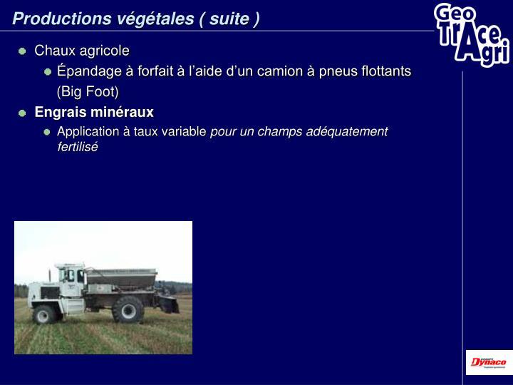 Productions végétales ( suite )