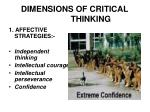 dimensions of critical thinking