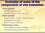 examples of some of the components of site evaluation