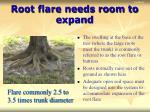 root flare needs room to expand
