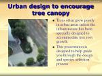 urban design to encourage tree canopy