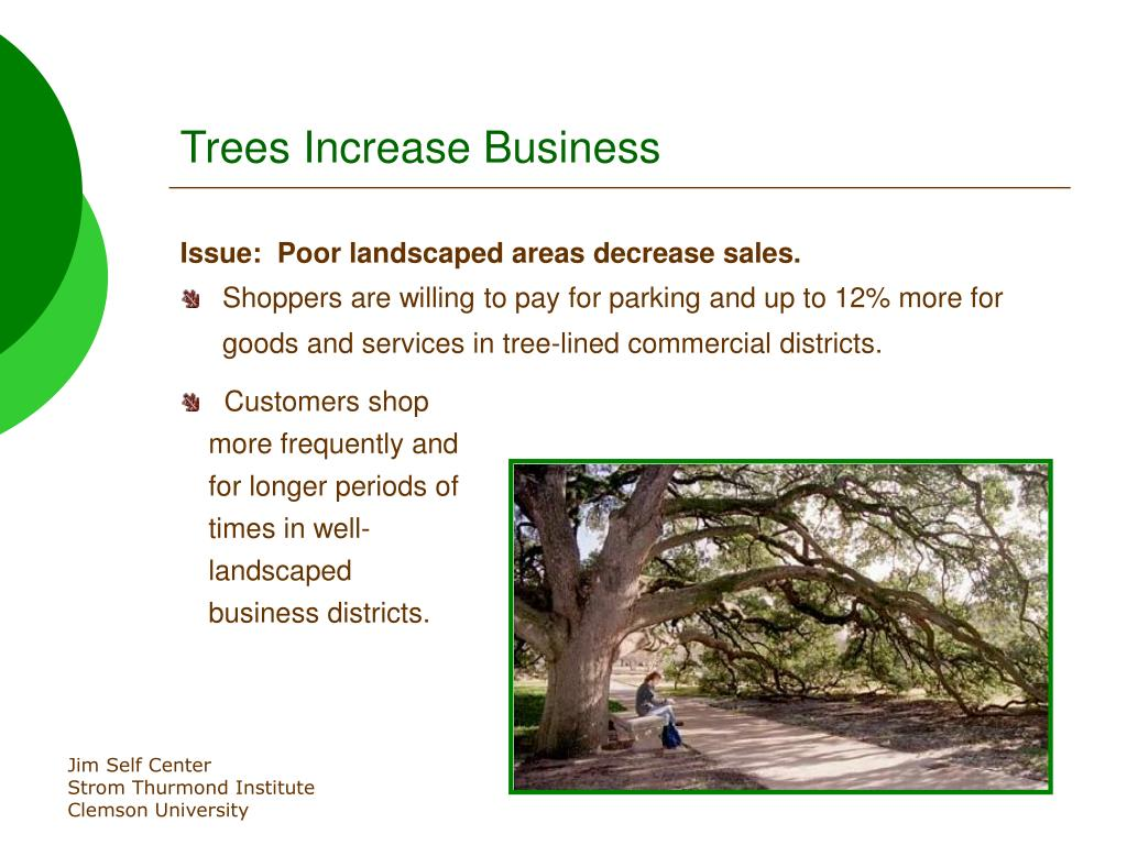 Trees Increase Business