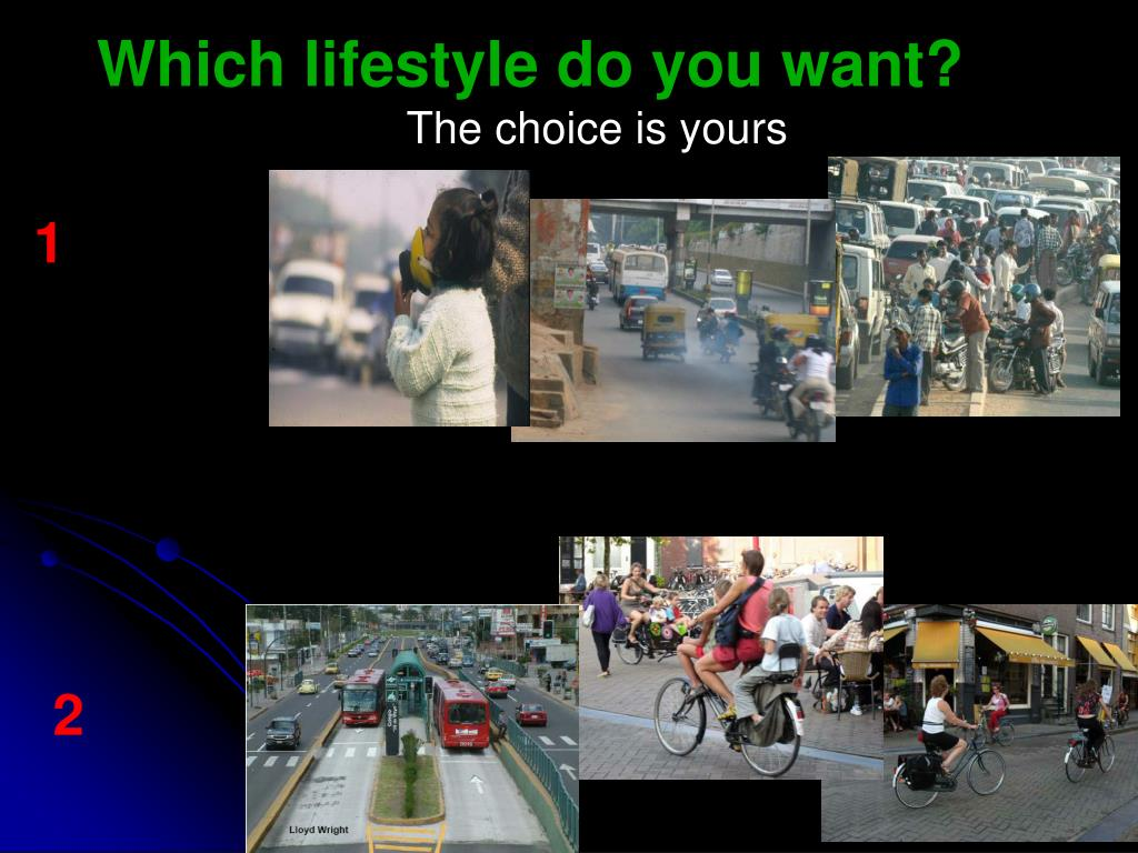 Which lifestyle do you want?