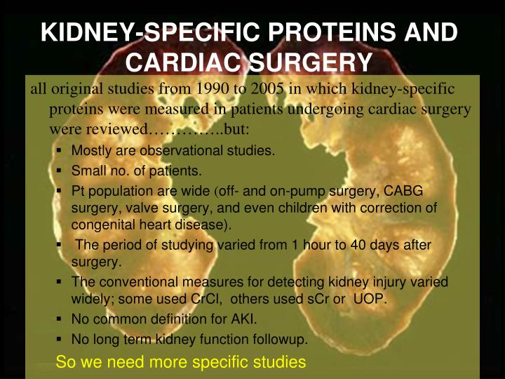 KIDNEY-SPECIFIC PROTEINS AND CARDIAC SURGERY