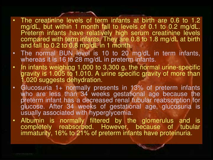 The creatinine levels of term infants at birth are 0.6 to 1.2 mg/