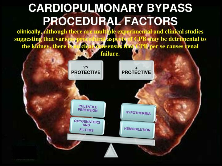 CARDIOPULMONARY BYPASS PROCEDURAL FACTORS