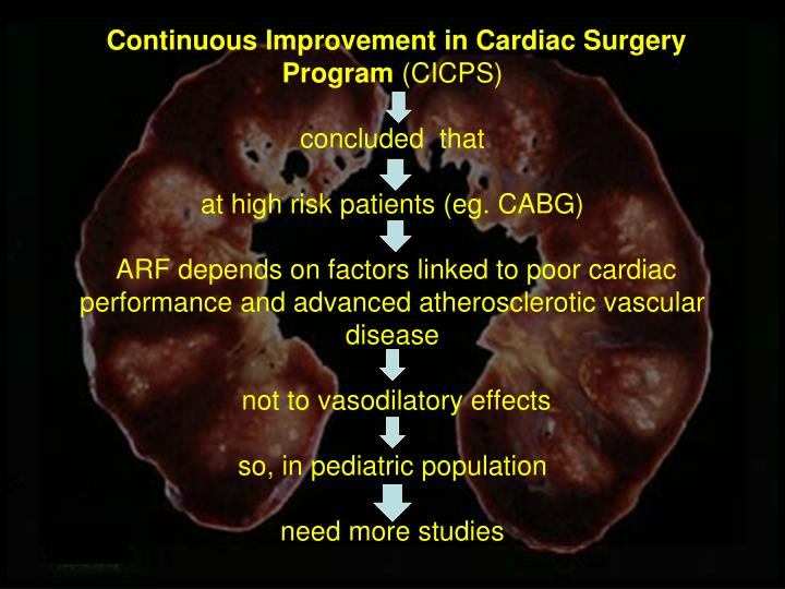 Continuous Improvement in Cardiac Surgery Program