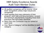hbr safety excellence awards audit team member duties10