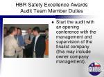 hbr safety excellence awards audit team member duties3