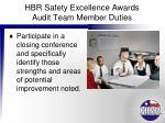 hbr safety excellence awards audit team member duties8