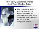 hbr safety excellence awards audit team member duties9