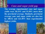 v cane and sugar yield gap