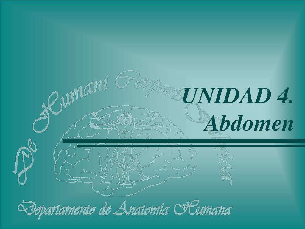 PPT - UNIDAD 4. Abdomen PowerPoint Presentation - ID:904028