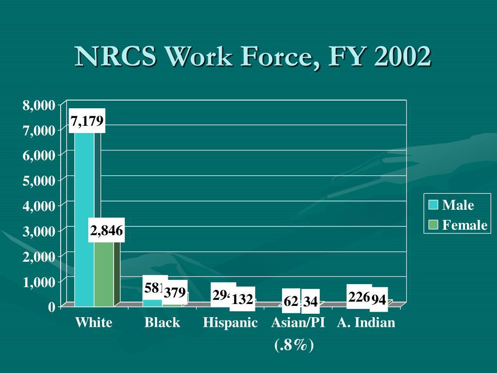 NRCS Work Force, FY 2002