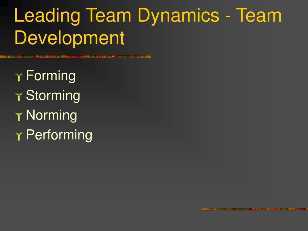 Leading Team Dynamics - Team Development