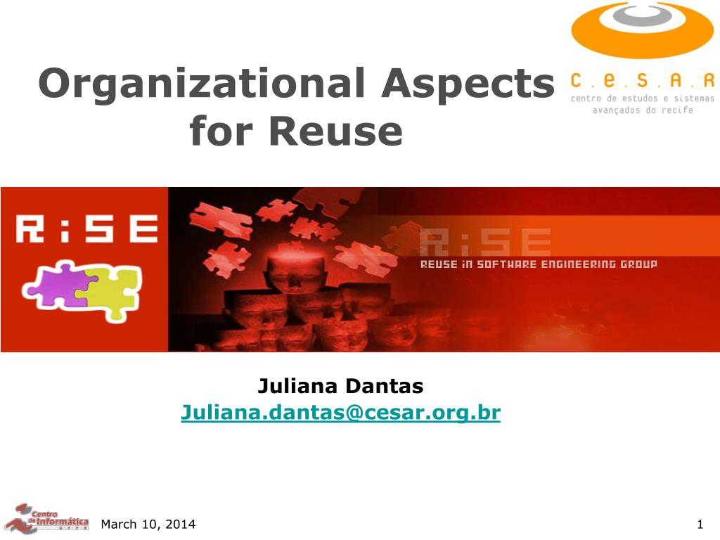 organizational aspects for reuse l.